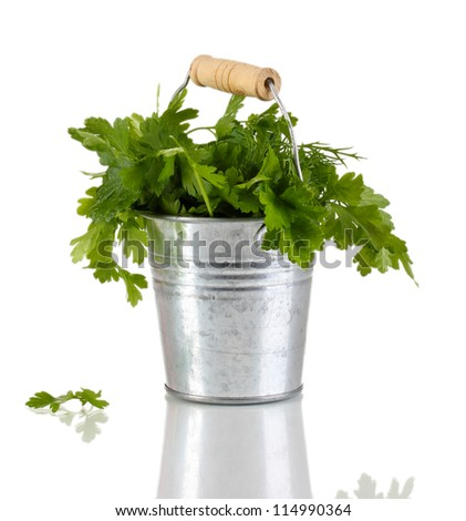 Metallic bucket with parsley and dill isolated on white