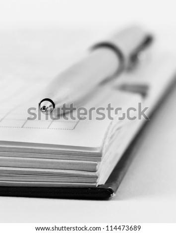 Metallic pen lying on the edge of opened datebook