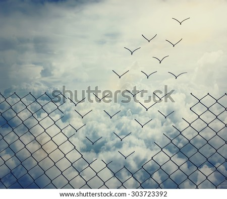 Metallic wire mesh transform into flying birds over the sky #303723392