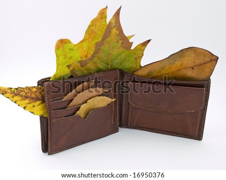 Metaphor about a man without a job after economy crisis and his wallet in the fall.