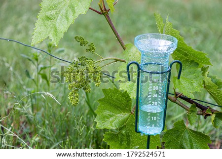 Meteorology with rain gauge in garden after the rain against the background of the vineyard ストックフォト ©