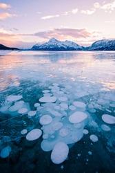 Methane Bubbles frozen in Abraham Lake in Clearwater County, near Nordegg, Alberta, Canada. Elliot Peak lit by the sunset in the background. Canadian Winter scene.