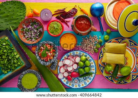 Mexican food mix with sauces nopal and tamale agave guacamole Foto stock ©