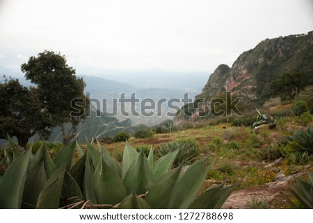 Mexican mountains in the sierra gorda mountain of four clubs