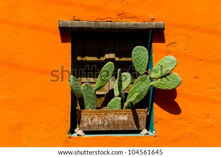 Mexican style window with cactus - stock photo