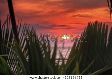 Mexican Sunset 3