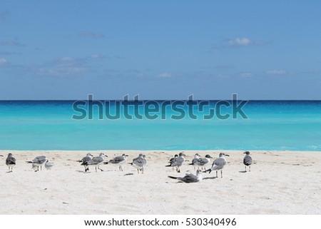 Mexico, Cancun,  Caribbean Sea.