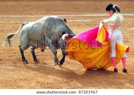 MEXICO CITY - MARCH 1:  An unidentified Matador and a bull are in a standoff before engaging in a bullfight battle on March 1, 2010 in Mexico city, Mexico.