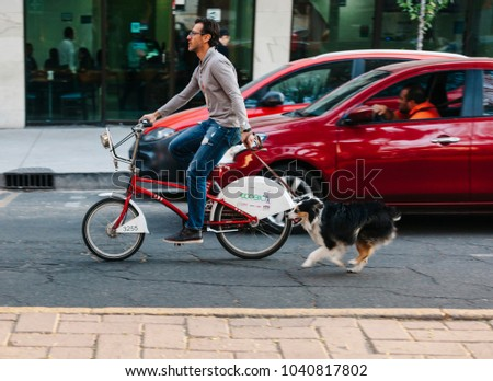 Mexico City, Mexico - December 28, 2017: Man on a bicycle (Ecobici) walking his dog in the La Condesa neighborhood in Mexico City.