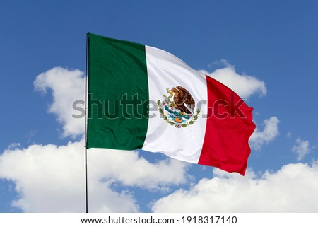 Mexico flag isolated on the blue sky with clipping path. close up waving flag of Mexico. flag symbols of Mexico.