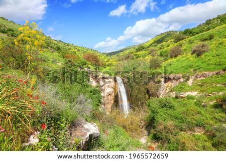 Mezar stream waterfall. Golan Heights. Israel North Nature. Spring landscape  Stok fotoğraf ©