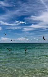 Miami Beach, keywest, beach day
