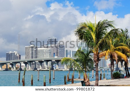 Miami city tropical view over sea from dock in the day with blue sky and cloud.