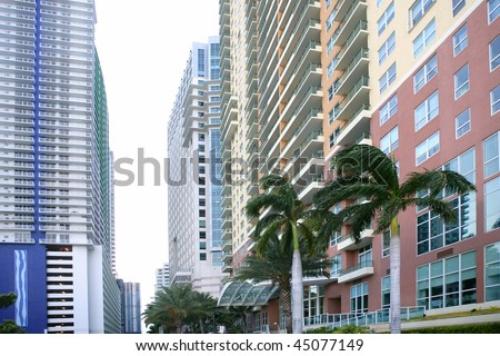Miami downtown city with colorful buildings and palm trees