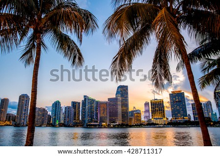 Miami, Florida skyline and bay at sunset seen through palm trees  #428711317