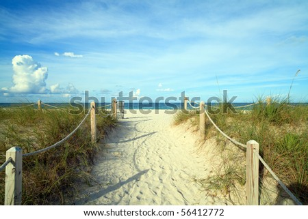 Miami's South Beach Nature Trail