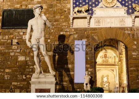 Michelangelo's David Sculpture and its Shadow in the Night, Piazza della Signoria, Florence, Italy