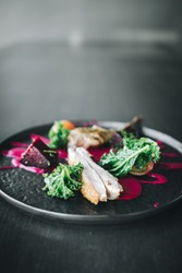 Michelin restaurant serving organic duck meat with kale and Beet puree on dark plate, chef cooking food
