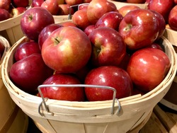 Michigan Macintosh Apples