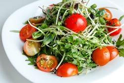 Microgreen and arugula Feta salad with tomatos, mint and orange, lemon dressing. summer dish. healthy food
