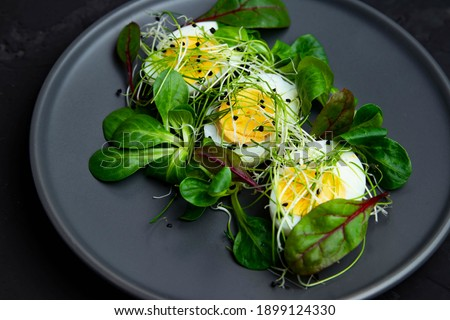 Microgreen  on the salad. Decorating the salad with steams of microgreens. Diet food. Boiled eggs and fresh next to fresh crispy greens. Contemporary style salad. Restaurant dish top view.