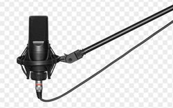 microphone isolated with clipping path. Condencer Mic for studio recording voice.