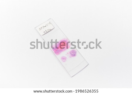 Microscope slide and coverslide with specimen isolated in whitebackground. Medical, histology, heathcare concept