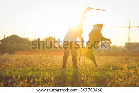 Middle age woman playing with her border collie dog in a field during an autumn day. Dog trying to catch the stick and having fun with mommy #367780460
