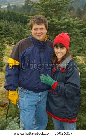 Middle aged couple search for the perfect Christmas tree to cut down at a  tree farm in rural Oregon.