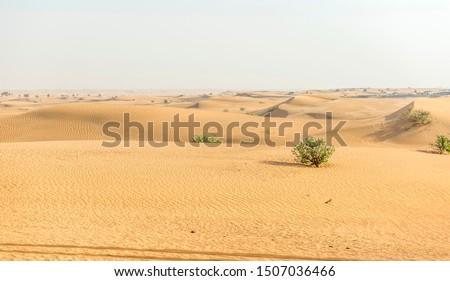 Middle East desert - colourful patterns of the Liwa Desert, which is part of the Rub al Khali Desert or Empty Quarter desert, straddling UAE, Oman, Yemen and Saudi Arabia