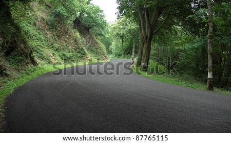middle of a road in the Ardennes (Luxembourg) in shady ambiance - Shutterstock ID 87765115