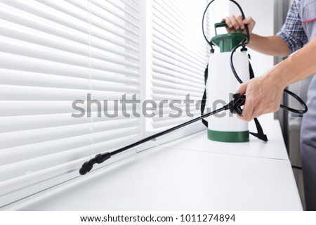 Midsection Of Worker Spraying Insecticide On Windowsill With Sprayer In Kitchen Foto d'archivio ©