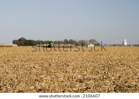 Midwest corn field being harvested