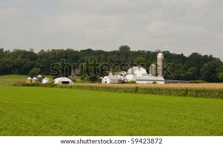 midwest dairy farm with crops on an overcast day