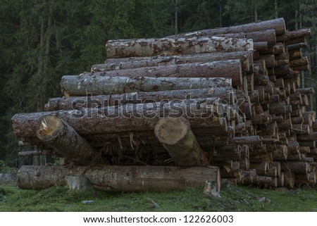 Mighty from countless trees existing timber pile - stock photo
