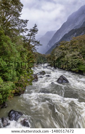 Milford Sound Highway, Fiordland National Park, New Zealand, with spectacular, massive rock faces streaming with hundreds of waterfalls, rushing streams & golden tussock grasses.