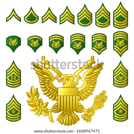 Military American army enlisted ranks insignia badges icons