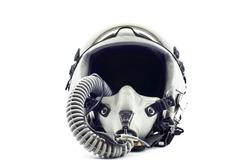 Military flight helmet isolated.