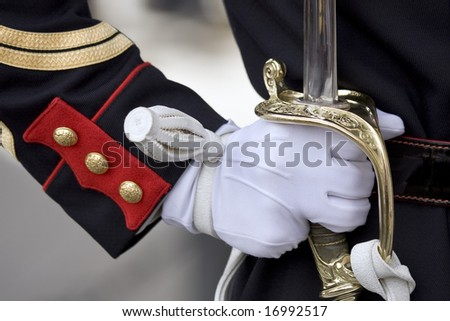 Military honour guard holding his sword presenting arms