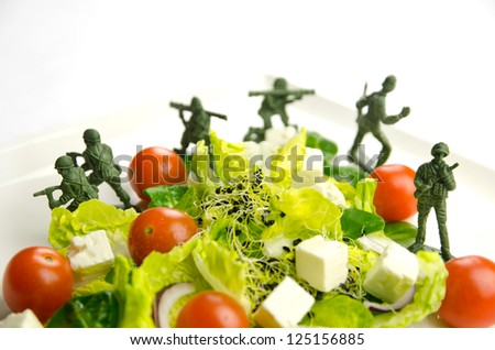 Military toy soldiers defending healthy food, the weight loss war