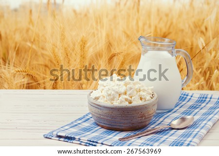 Milk and cottage cheese over wheat field background