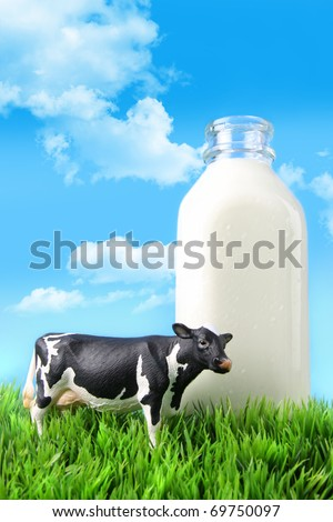 Milk bottle in the grass with blue sky