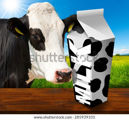 Milk Carton in Countryside with Cow / White packaging of fresh milk with text Milk and black spots, in a countryside landscape with green grass and a close up of a black and white curious cow.