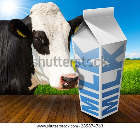 Milk Carton in Countryside with Cow / White packaging of fresh milk with text Milk, in a countryside landscape with green grass and a close up of a black and white curious cow.
