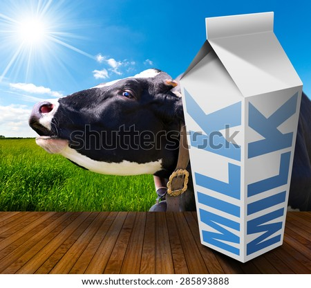 Milk Carton in Countryside with Cow / White packaging of fresh milk with text Milk, in a countryside landscape with green grass and a close up of a black and white cow mooing