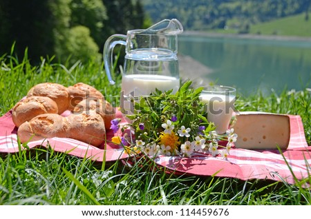 Milk, cheese and bread served at a picnic in an Alpine meadow, Switzerland