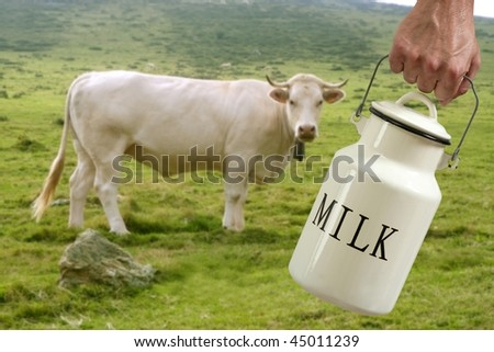 Milk pot urn on farmer hand with cow in meadow background [Photo Illustration] - stock photo