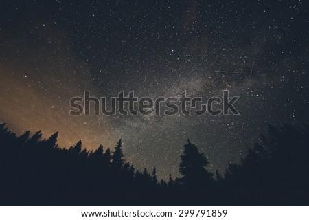 Milk Way night sky over pine trees at Breckenridge, Colorado