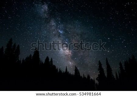 Milky Way glowing over a dark silhouetted forest.