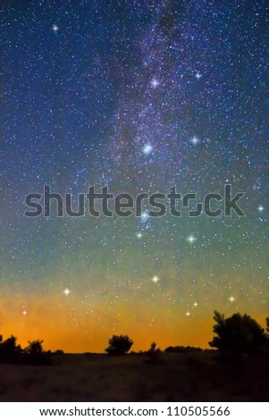 milky way over a trees silhouette